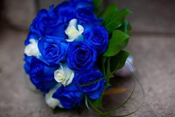 Hoa cưới dành cho cung Nhân Mã