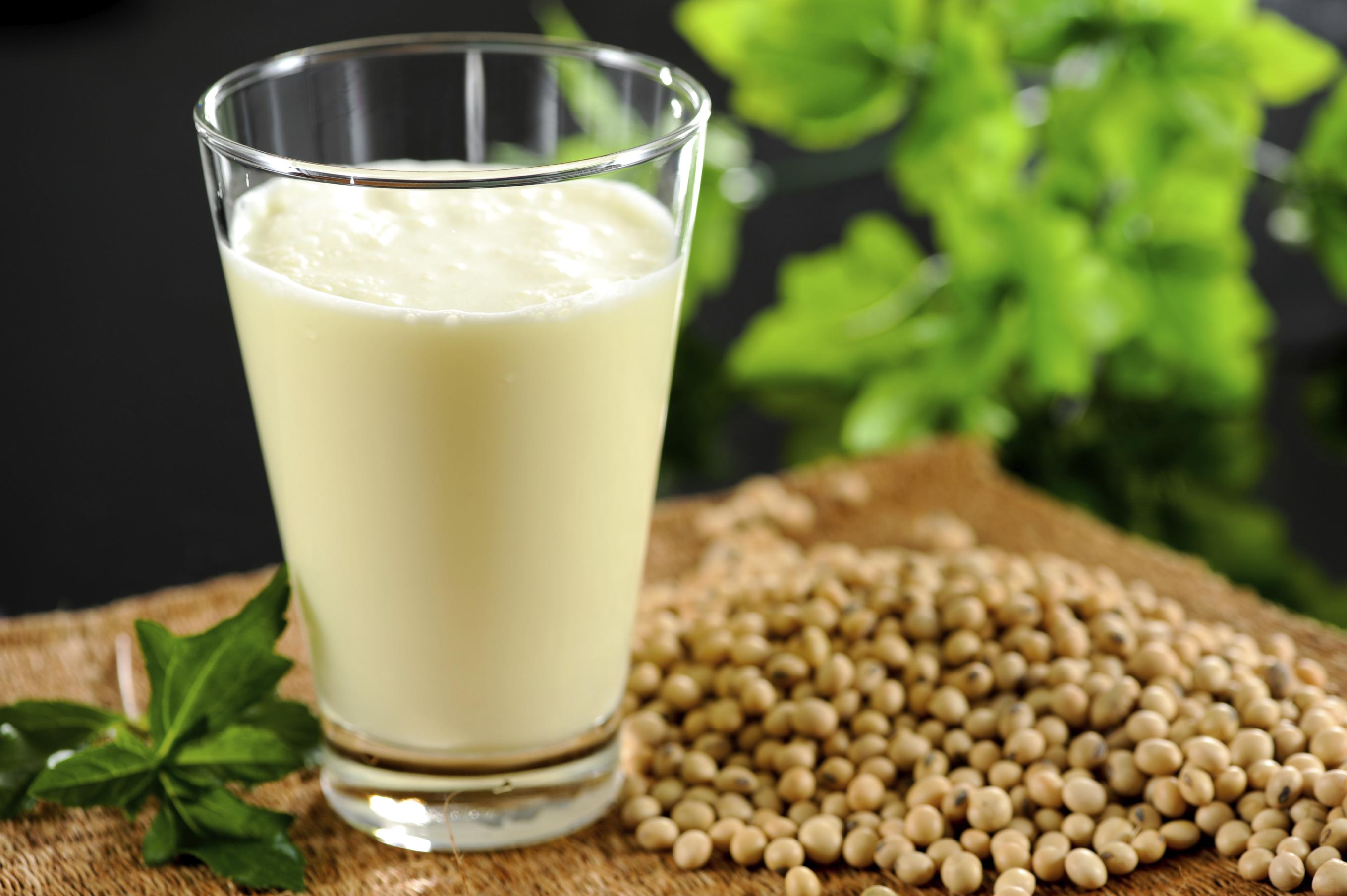 Sữa đậu nành dễ uống và lành tính