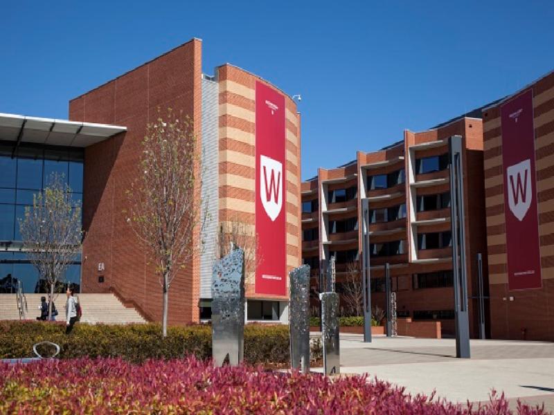 Trường kinh doanh quốc tế Western Sydney